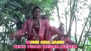 Suwe Ora Jamu - Campursari Dolanan Anak-anak oleh Sanggar Greget (VCD quality video)