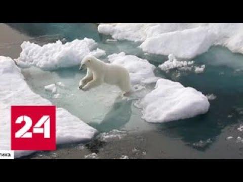 От экологии до грузоперевозок: в Петербурге прошел масштабный форум - Россия 24