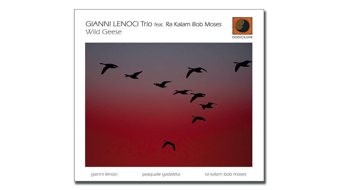 Wlid Geese/GIANNI LENOCI/ジャンニ・レノーチ|JAZZ|ディスク ...