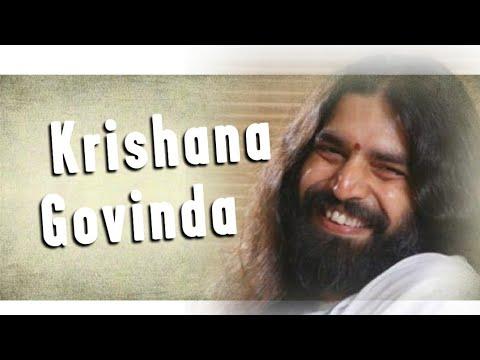 Krishna Govinda || Rishi Nityapragya ||