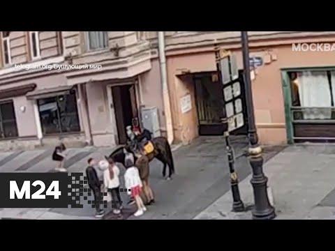 Конский шок! Лошадь ударила скейтера, решившего проехать на доске под брюхом животного - Москва 24