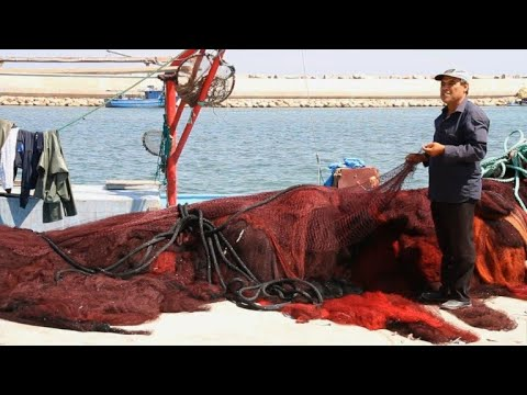 Dynamite fishing thrives in Libya's chaos