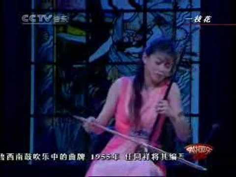 Chinese erhu music: 一枝花 / 二胡:馬向華