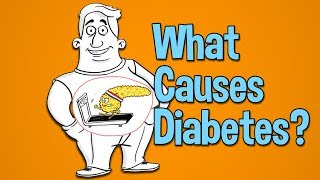 In this video, we explain what causes diabetes (type 2 diabetes) and high blood sugar. review how does start is the role of ...