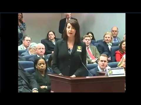 Florida Open Carry HB 163 Judiciary Committee   January 28, 2016