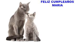 Maria - cats - Happy Birthday