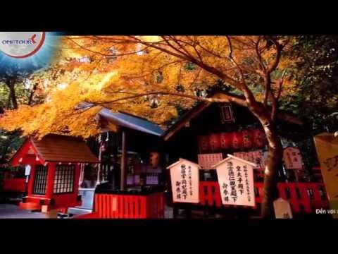 Mùa thu vi vu khắp Nhật Bản