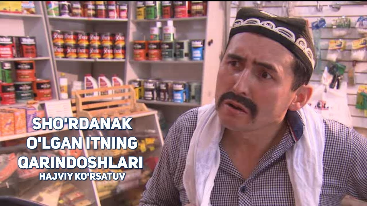 Sho'rdanak - O'lgan itning qarindoshlari | Шурданак - Улган итнинг кариндошлари (hajviy ko