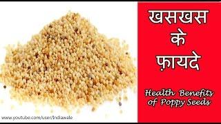 खसखस क फयद  Health Benefits Of Poppy Seeds  Khas-Khas ke fayde