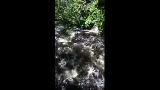 23rd Adirondack Folk Music Festival: Waterfall 8/12/12