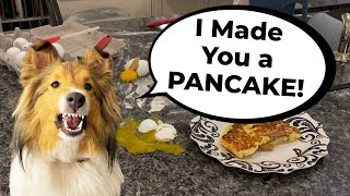 'I Made you a SPECIAL PANCAKE!' ❤ A Biscuit 'the sheltie' Talky Father's Day Edition