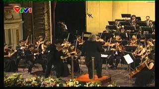 Đàn Vỹ Cầm - đàn violon