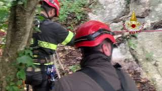 Vigili del fuoco recuperano un cagnolino