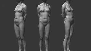Zbrush sculpting - Female anatomy study