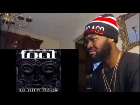 TOOL - THE POT - REACTION