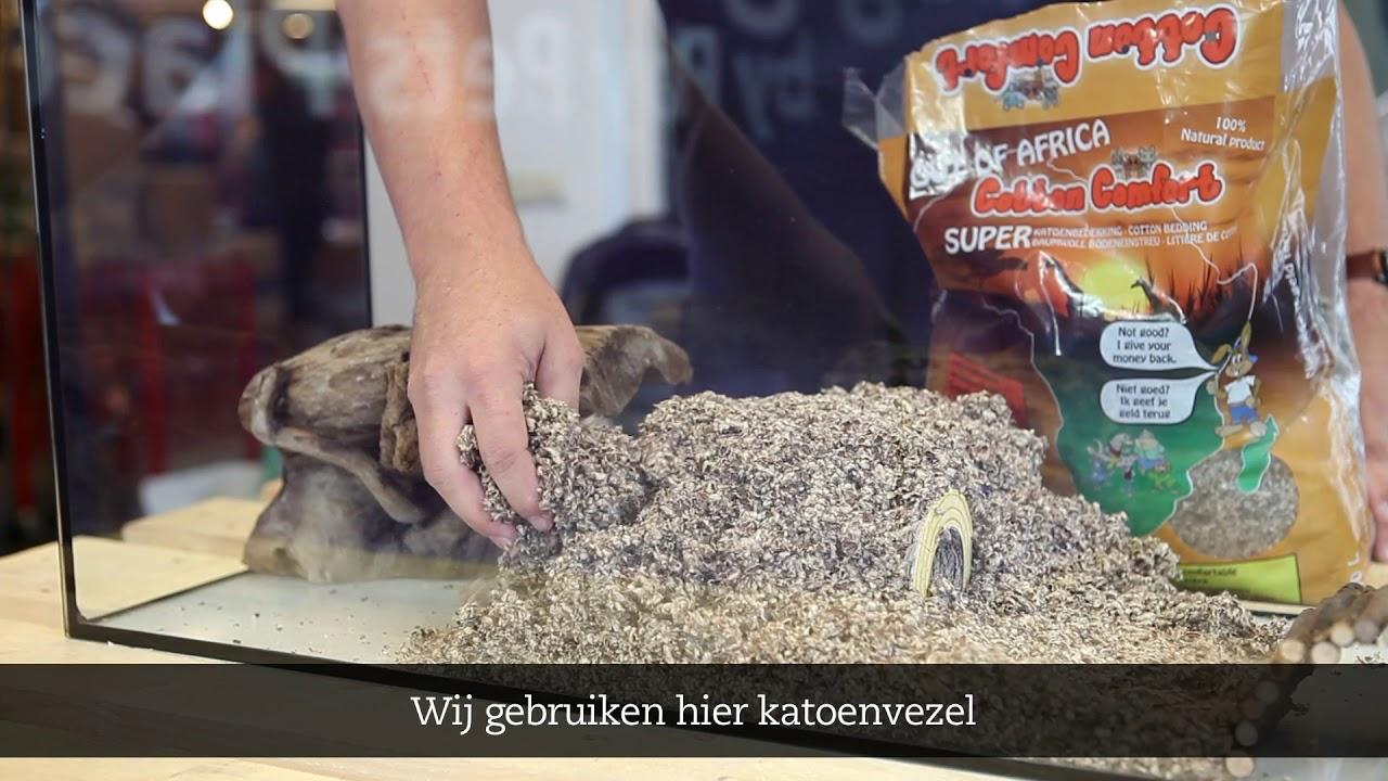 Hamsterscaping Ontwerp Jouw Hamsterkooi Info Youtube