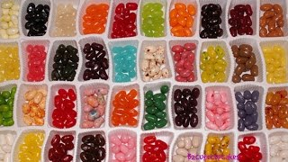 Candy Shop- Candy Hunt-Sweets, Jeally Belly-Bean Boozled-Bubble Gum-Lollipops|B2cutecupcakes