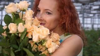 Клип Аромат розы(, 2016-12-23T22:42:29.000Z)
