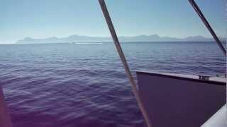 No-Frills Excursions - Anaconda 2 Catamaran from Alcudia Majorca