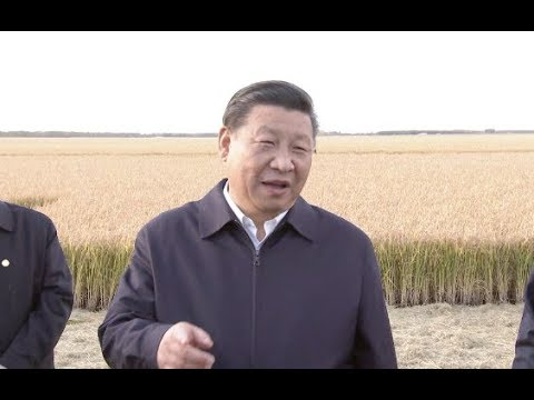 Chinese President Xi Jinping Inspects the Seven Stars Farm in China's Heilongjiang Province