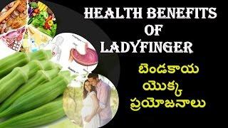 Health Benefits Of Ladyfinger బెండకాయ యొక్క ప్రయోజనాలు