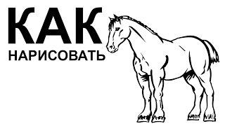 Лошадь рисунок карандашом. КАК поэтапно НАРИСОВАТЬ ЛОШАДЬ(Как нарисовать лошадь поэтапно карандашом для начинающих за короткий промежуток времени. http://youtu.be/-OzqatIap9Q..., 2015-06-22T08:42:15.000Z)
