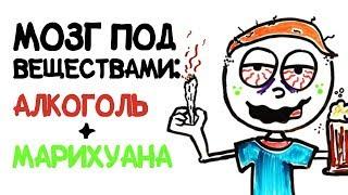 Мозг под веществами: алкоголь + марихуана [AsapSCIENCE]