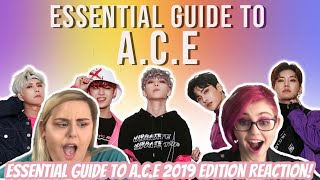 Gambar cover Essential Guide to A.C.E-2019 Edition Reaction!