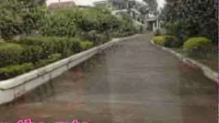NEW RESALE LOTS in South Hills Subdivision, Labangon, Cebu City