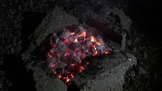바베큐 ASMR Campfire Barbecue and…