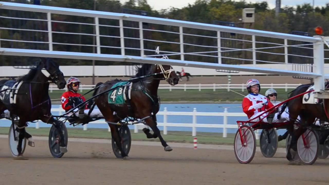 Indiana Harness Racing - A Family Business - YouTube