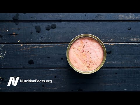 Which Brand Of Tuna Has The Most Mercury?
