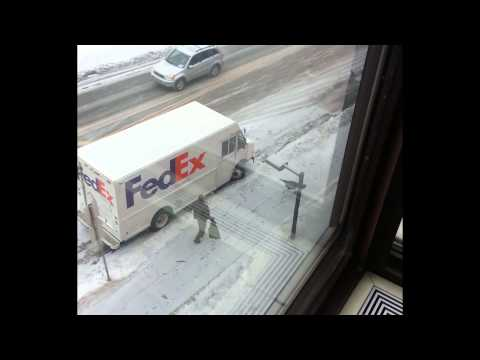 Wild Turkey vs. UPS Driver (around FedEx Truck!)