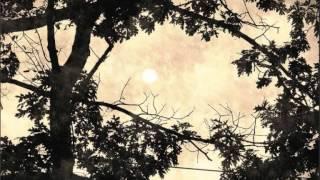 """Adriano Correia de Oliveira - """"O Sol p"""