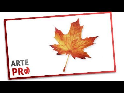 Como pintar una hoja de arbol en Otoño con acuarelas - YouTube