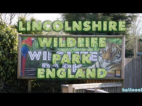 Family Visit To Lincolnshire Wildlife Park