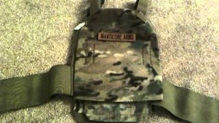 SKD Tactical PIG BRIG plate carrier review and TAP Gamma plate fit