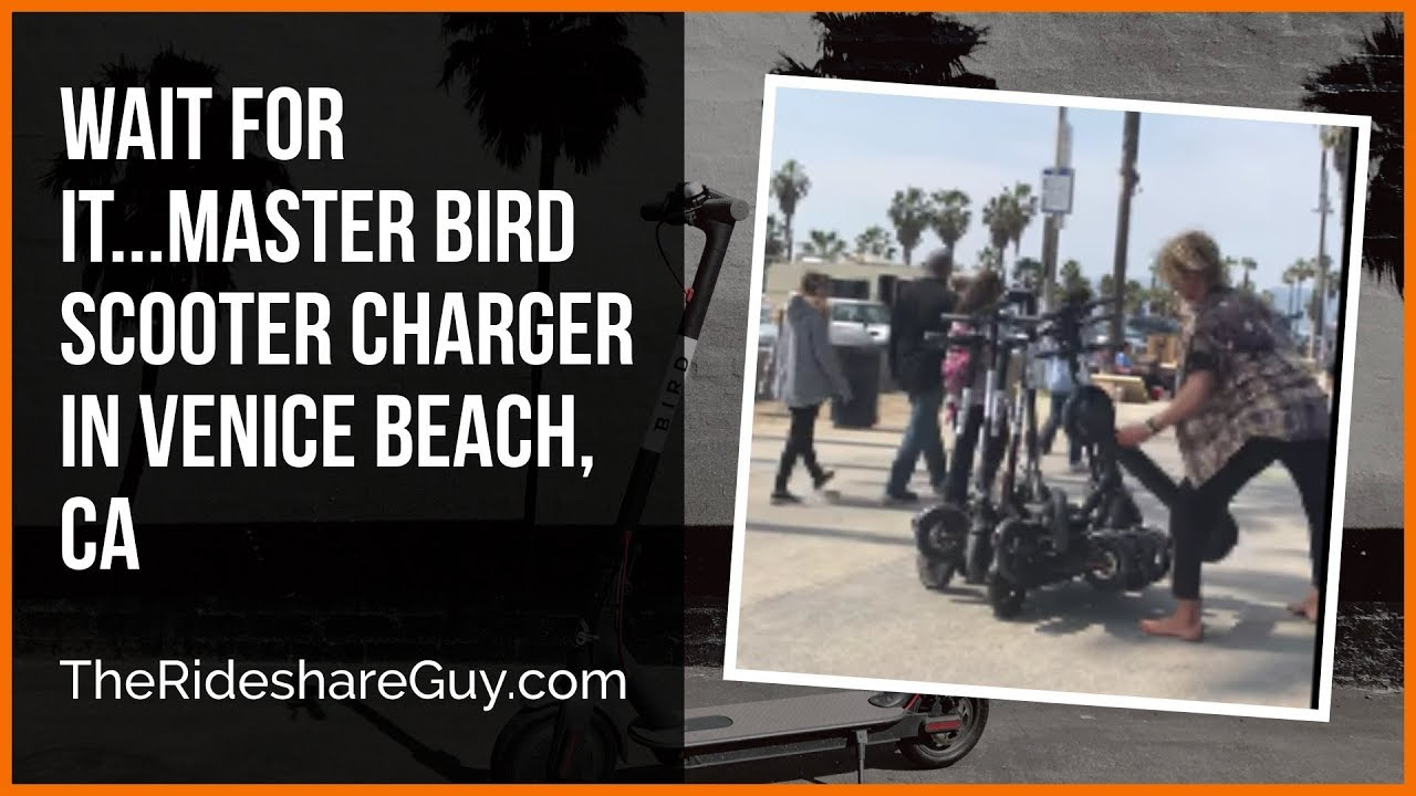 Wait For It   Master Bird Scooter Charger in Venice Beach, CA