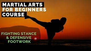 Martial Arts for Beginners – Lesson / Karate - Fighting Stance & Defensive Footwork