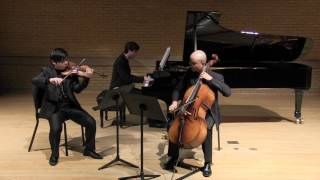 """Voertman Piano Trio playing Dvorak Piano Trio No.4 """"Dumky"""" 1 mov"""