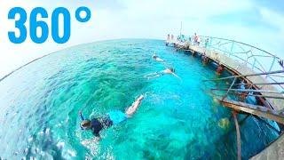 360° video Egypt Red Sea Snorkeling at Blue Ocean water Peer Samsung Gear VR Box thumbnail
