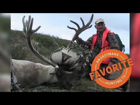 Record Book Trophy Caribou Hunt