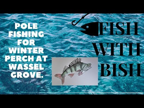 Pole Fishing For Winter Perch At Wassel Grove