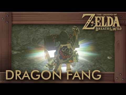 Zelda Breath of the Wild - Dragon Fang Locations (Hyrule Castle)