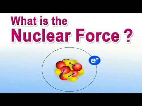 What is the Nuclear Force?