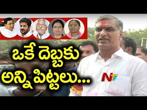 TRS Leader Harish Rao Back to Power with 1.2Lks Majority | NTV