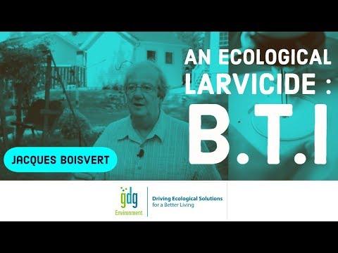 An Ecological Larvicide: B.T.I