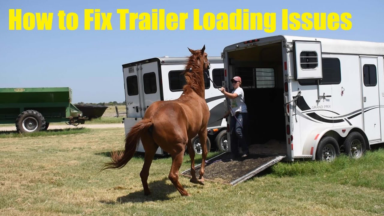 How to Fix Trailer Loading Issues   Bello Case Study