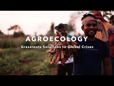 Video Launch - Agroecology: Grassroots Solutions to Global Crises | 11 June 2021