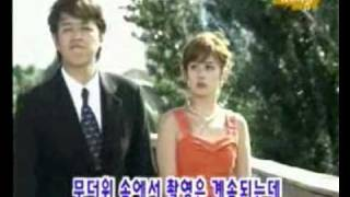 Jang Nara  Wedding NG1